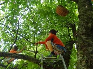 Waldkinder am Baum